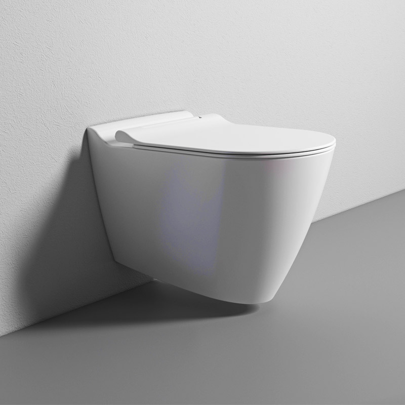 Secteur-I-rim-Wall-hung-wc-white-glossy-with-i-hygiene
